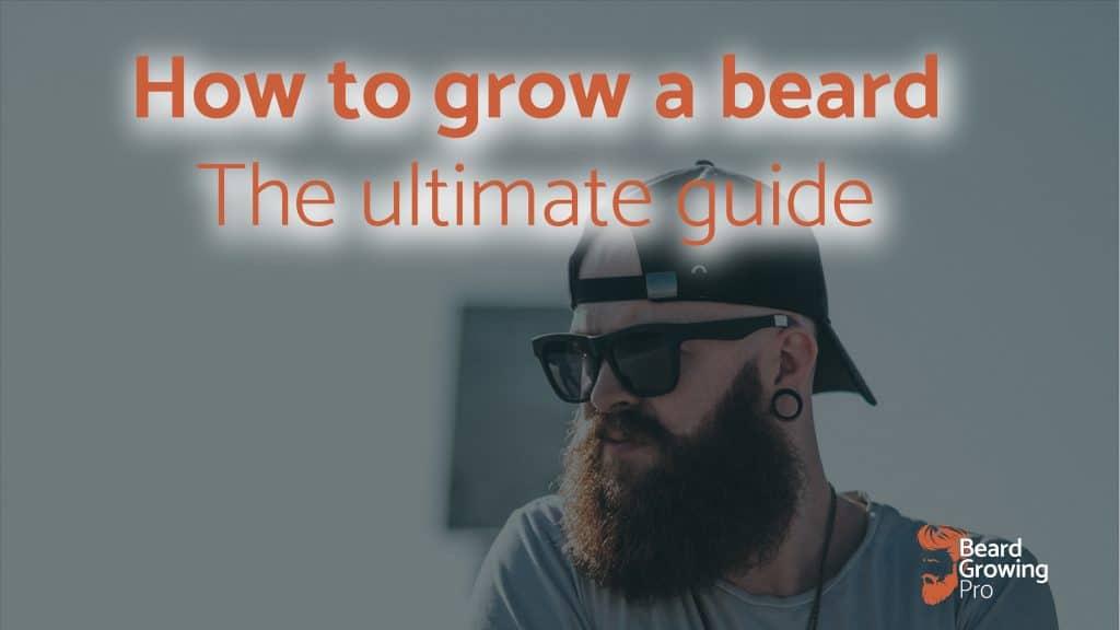 how to grow a beard - header