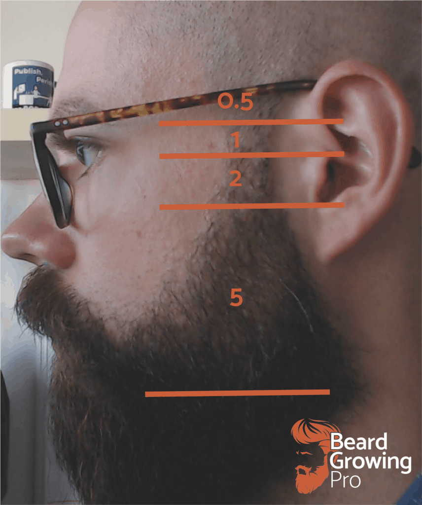 how to trim a beard - sideburns