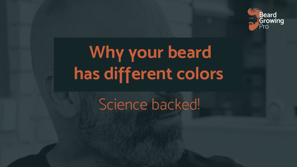 Why does my beard have different colors? The real answer!