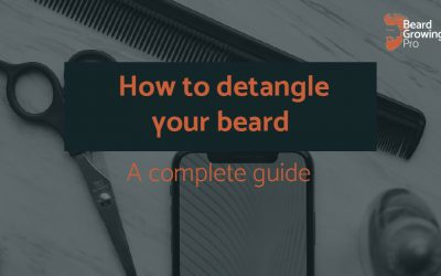 How to detangle your beard – a complete guide to tangle-free beards!
