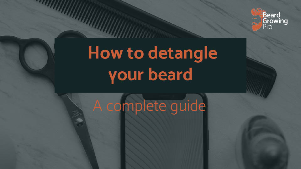 how to detangle your beard header