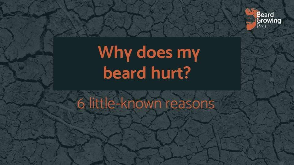 Why does my beard hurt? 6 reasons your beard may be hurting