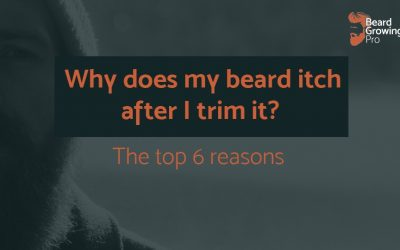 Why does my beard itch after I trim it? The top 6 reasons