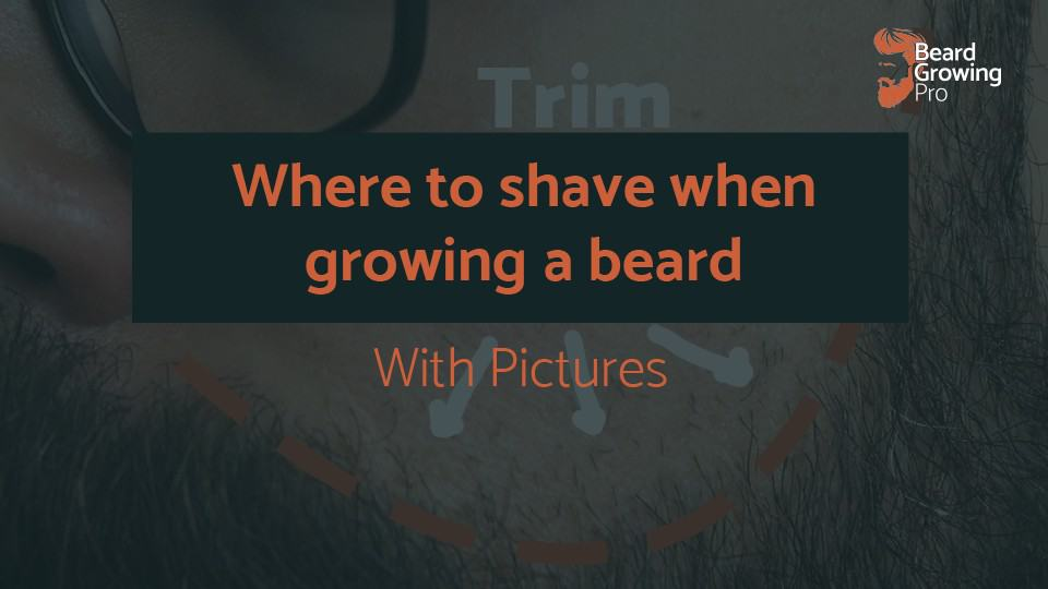 Where to shave when growing a beard – with pictures
