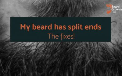 My beard has split ends – the quick, easy fixes!