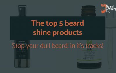Beard shine products – make your beard shine with this top 5!