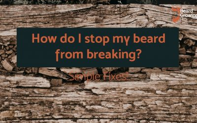 How do I stop my beard from breaking? Simple FIXES!