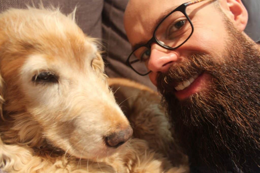 Do dogs like beards