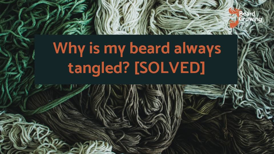 Why is my beard always tangled