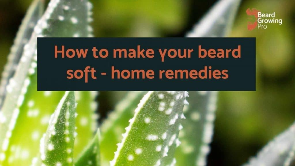 How to make beard soft home remedies