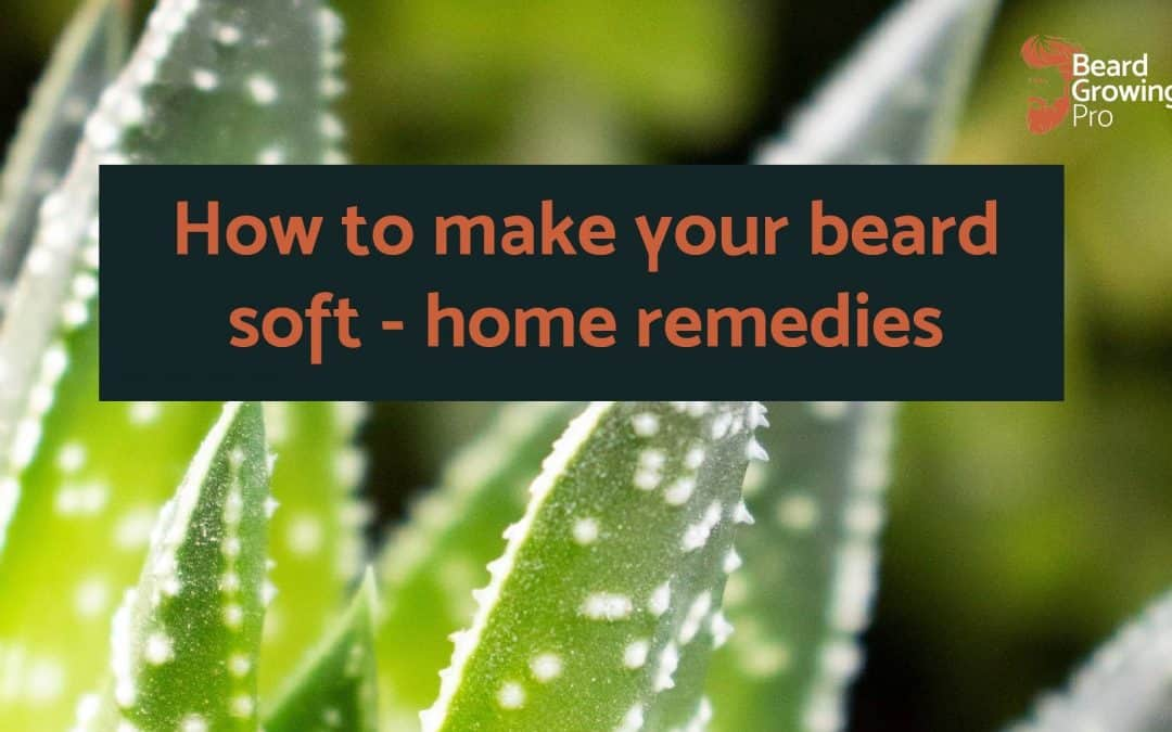 How to make beard soft home remedies