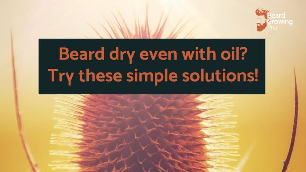 Beard dry even with oil? Try these simple solutions!