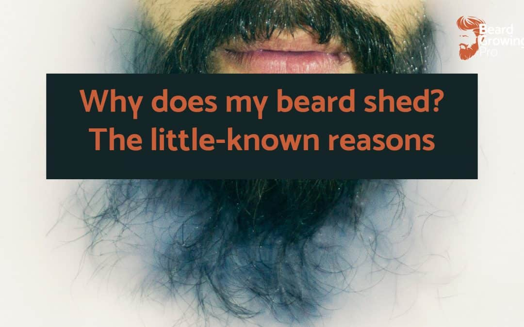 Why does my beard shed? The little-known reasons!