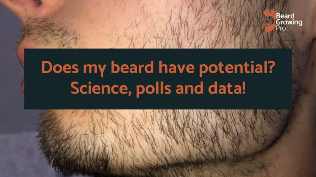 Does my beard have potential
