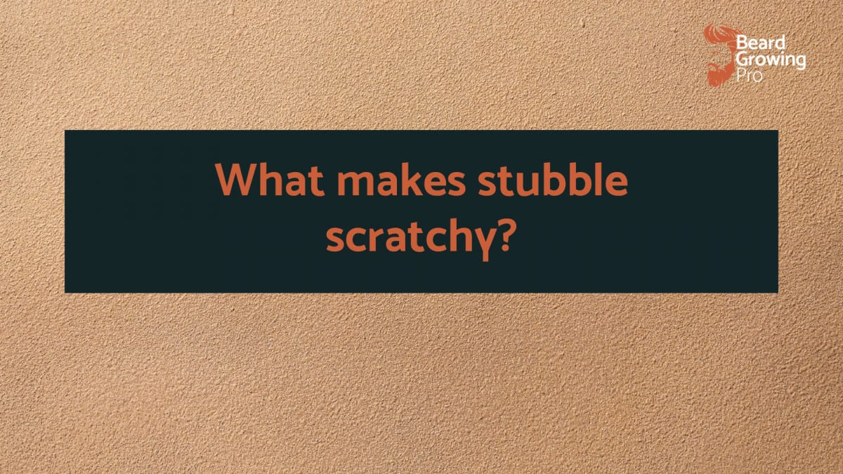 What makes stubble scratchy?